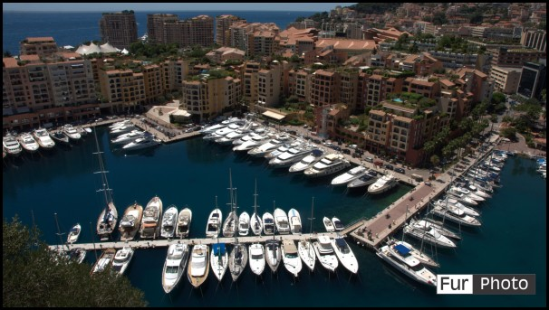 Wallpapers - Fur Photography - Fontvieille, Monaco